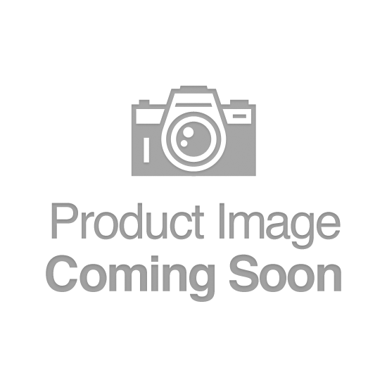 Anacs No Date MS 60 Planchet Commem Silver Dollar Size Type II 90% Silver